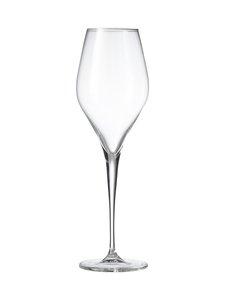 Schott Zwiesel - Finesse Champagner -kuohuviinilasi 297 ml, 6 kpl | Stockmann