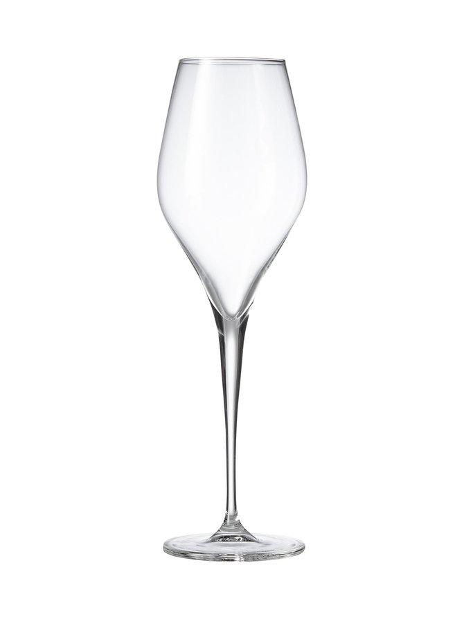 Finesse Champagner -kuohuviinilasi 297 ml, 6 kpl