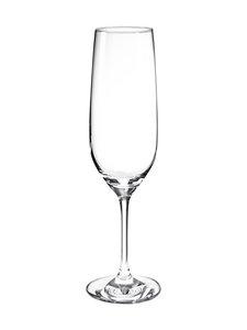 Schott Zwiesel - Viña-kuohuviinilasi - KIRKAS | Stockmann