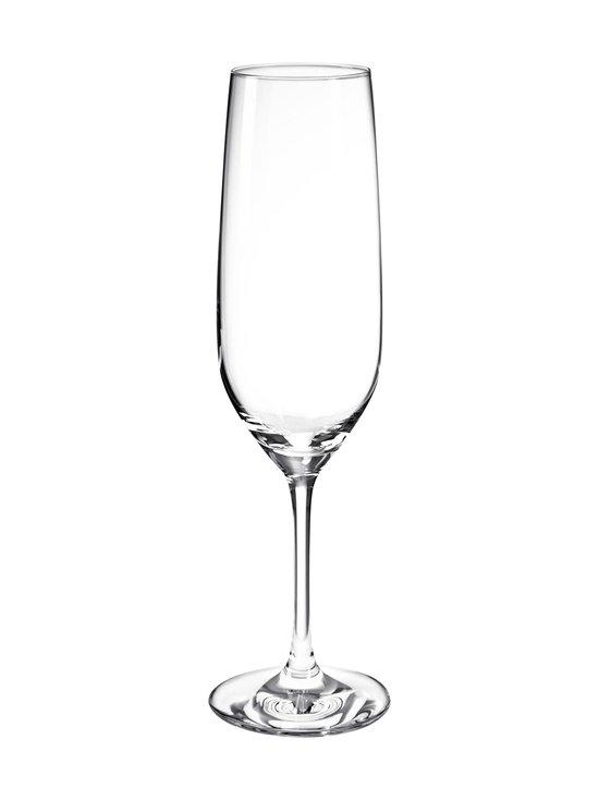 Schott Zwiesel - Viña-kuohuviinilasi - KIRKAS | Stockmann - photo 1