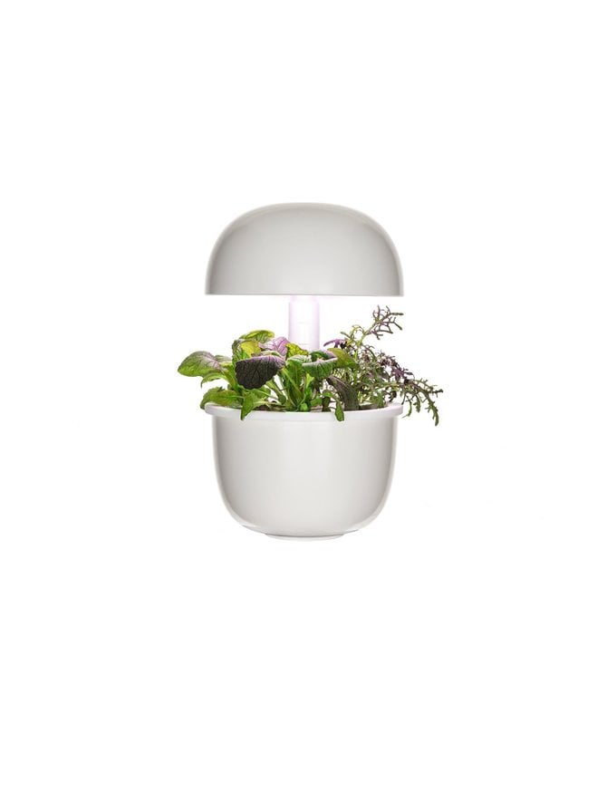 3e Smart Garden -sisäpuutarha