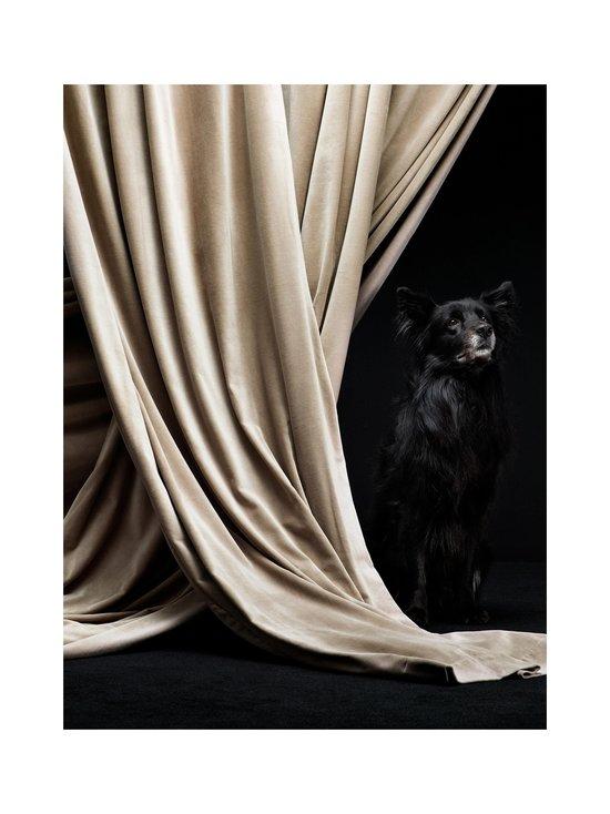 Linum - Paolo-samettiverho 135 x 290  cm - CREAMY BEIGE   Stockmann - photo 2