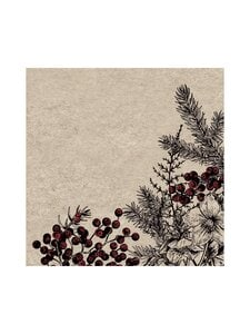 Paper+Design - Botanical Xmas -servetti 33 x 33 cm, 25 kpl - MULTI-COLOUR   Stockmann