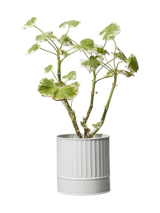 Wikholm Form - Amira-ruukku 13 x 13 cm - WHITE | Stockmann - photo 3