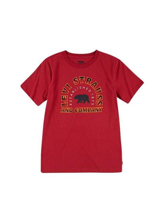 LVB SS Graphic Tee Shirt -paita