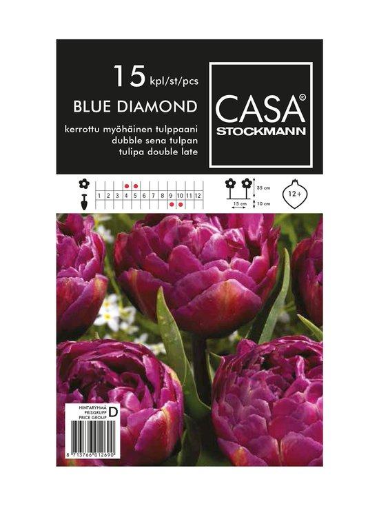 Casa Stockmann - Kerrottu myöhäinen tulppaani -kukkasipulit - VIOLETTI | Stockmann - photo 1