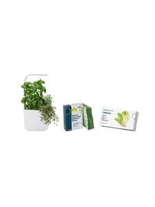 Tregren - T3-keittiöpuutarha ja salaatin kasvatussetti - WHITE | Stockmann