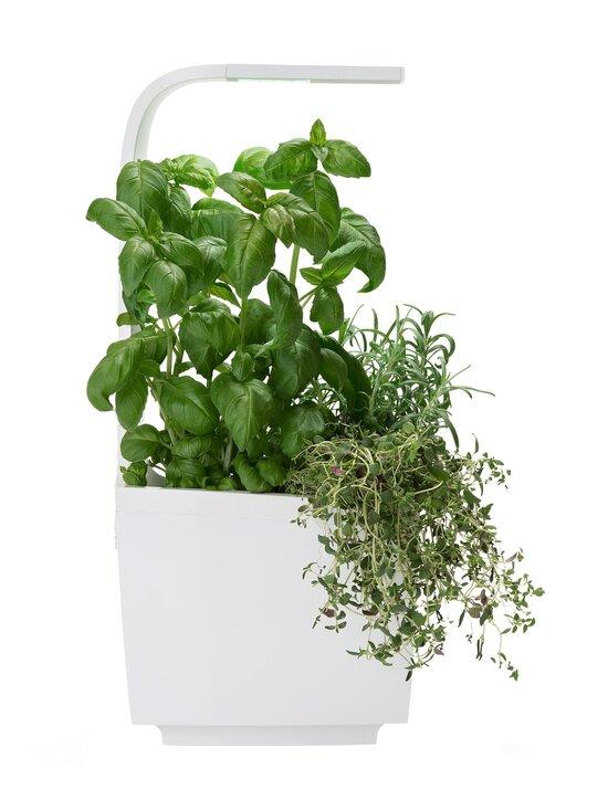Tregren - T3-keittiöpuutarha ja salaatin kasvatussetti - WHITE | Stockmann - photo 2