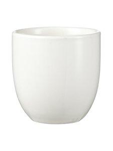 Tokyo Design Studio - White Plum -teekuppi 7,5 x 7 cm - VALKOINEN | Stockmann