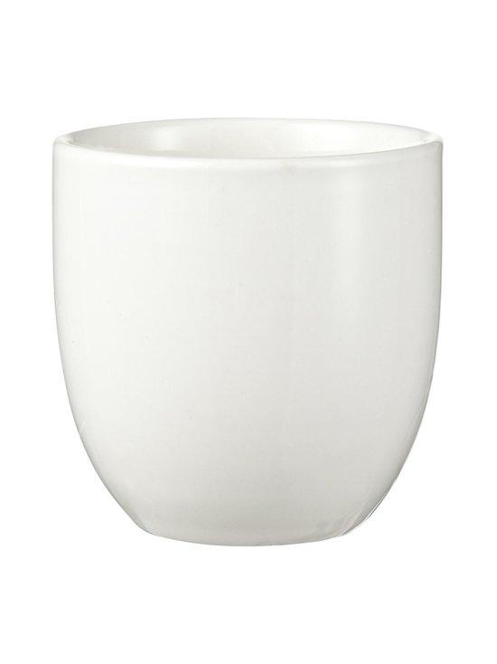 Tokyo Design Studio - White Plum -teekuppi 7,5 x 7 cm - VALKOINEN | Stockmann - photo 1