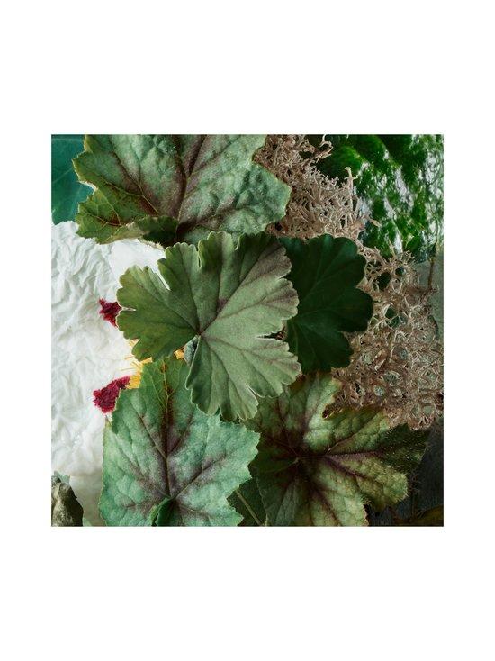 Molton Brown - Geranium Nefertum Bath & Shower Gel -suihkugeeli 300 ml - NO COLOR | Stockmann - photo 4