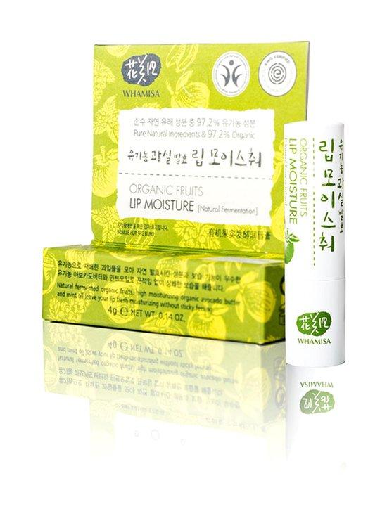 Organic Fruits Lip Moisture -huulivoide