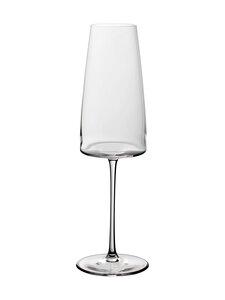 Villeroy & Boch - MetroChic-samppanjalasi 450 ml, 2 kpl - CLEAR | Stockmann