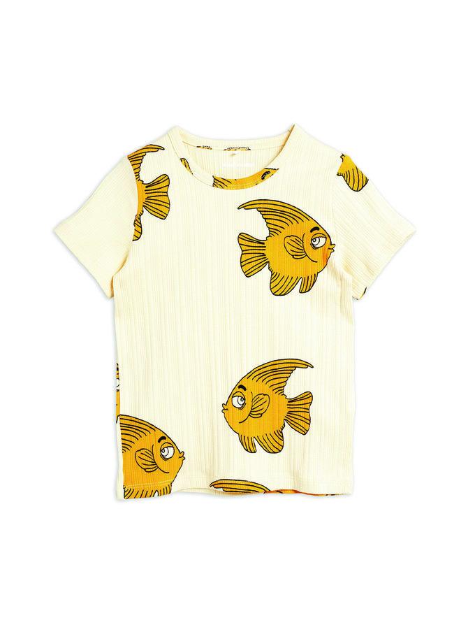 Fish-paita
