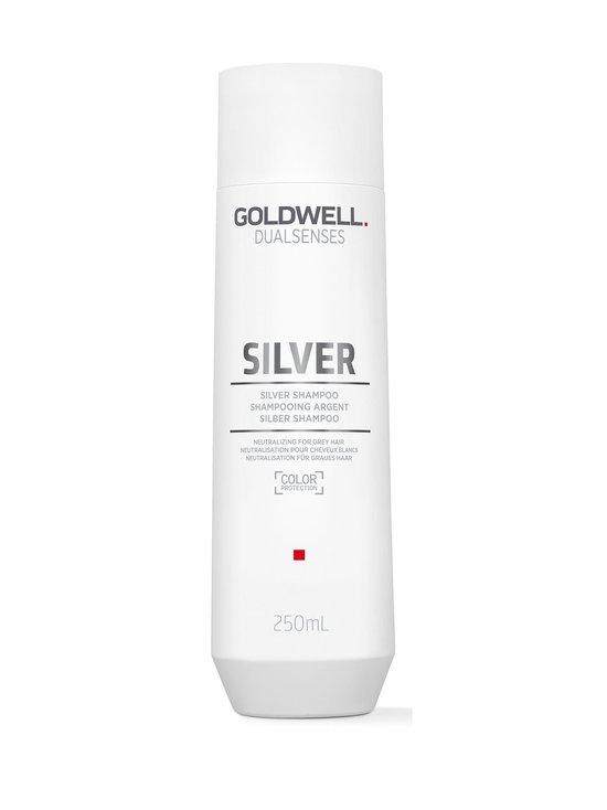Goldwell Dualsenses - Silver Shampoo 250 ml - null | Stockmann - photo 1