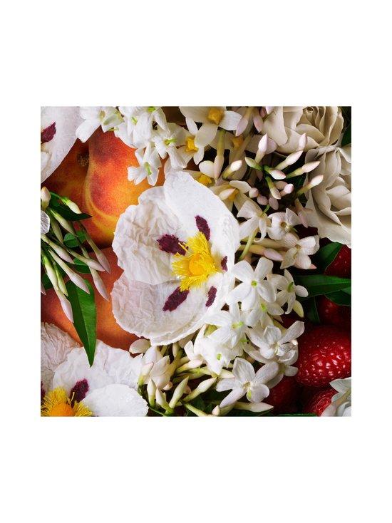 Molton Brown - Jasmine & Sun Rose Body Lotion -vartalovoide 300 ml - NO COLOR | Stockmann - photo 5