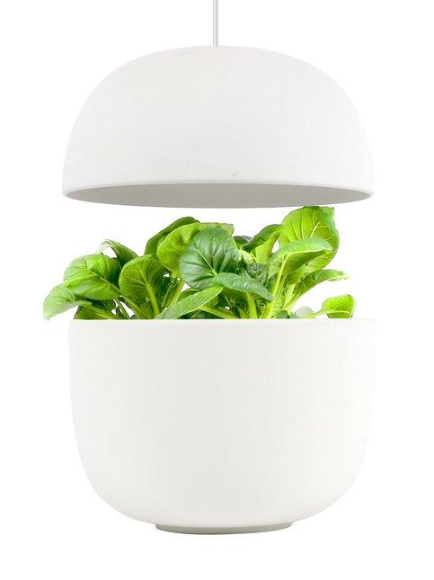 3 Smart Garden -sisäpuutarha