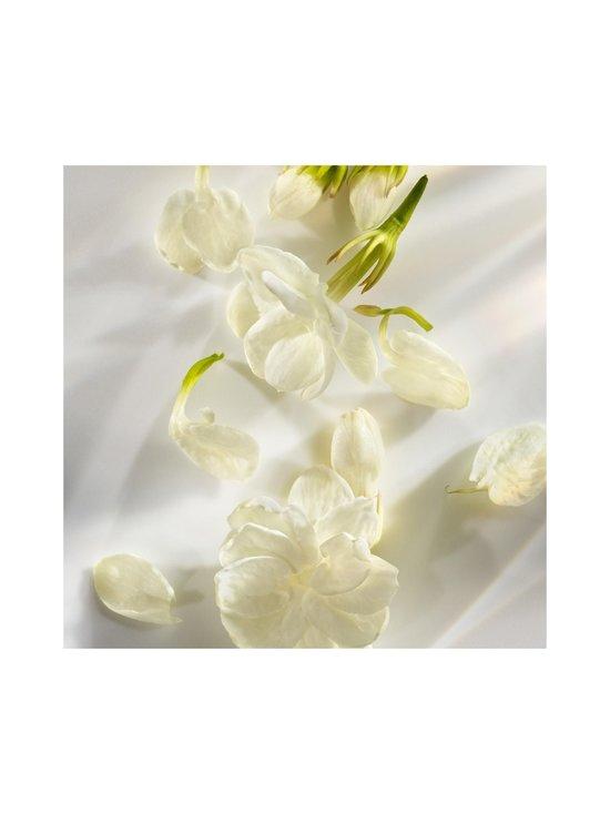 Michael Kors - Wonderlust Eau Fresh EdT -tuoksu - NOCOL | Stockmann - photo 7