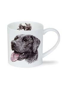Dunoon - Orkney H Longmuir Dog Coll Labrador -muki 0,35 l - MONIVÄRINEN | Stockmann