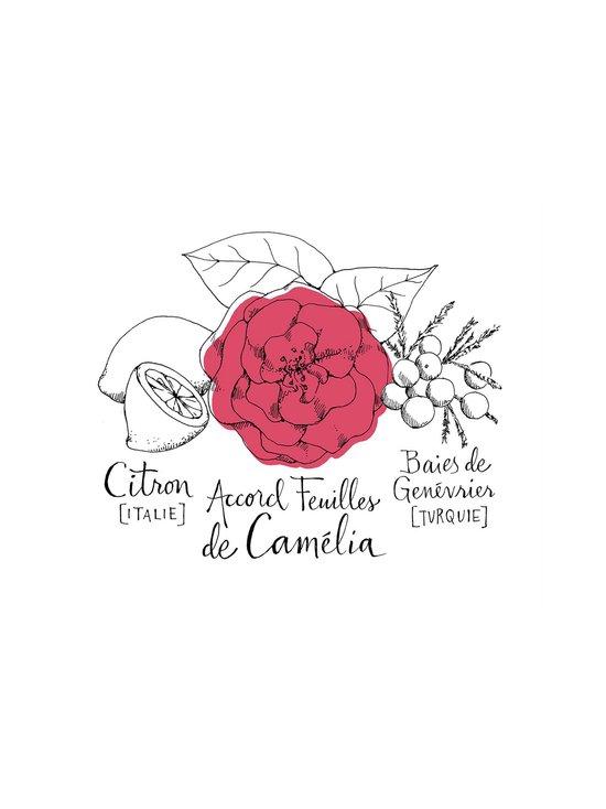 Camélia Intrépide Cologne Absolue -tuoksu