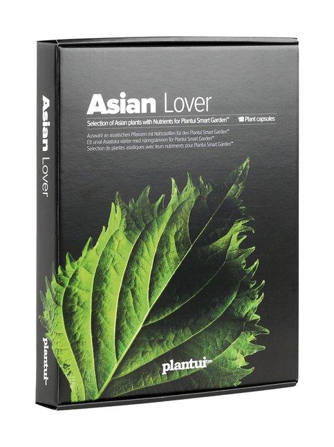 Asian Lover -kasvikapselilajitelma
