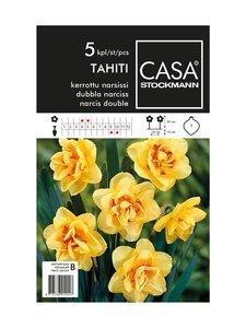 Casa Stockmann - Kerrottu narsissi -kukkasipulit - KELTAINEN/ORANSSI | Stockmann