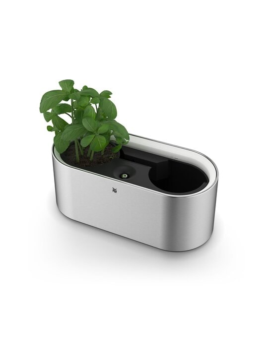 WMF - Ambient Herbs@Home Double -yrttipuutarha - STEEL | Stockmann - photo 3