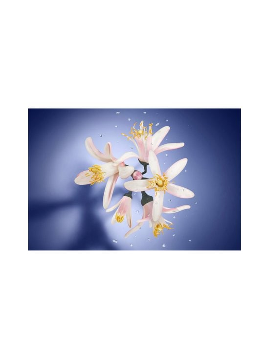 Lancôme - La vie est belle Éclat EdT -tuoksu 50 ml - NOCOL | Stockmann - photo 3