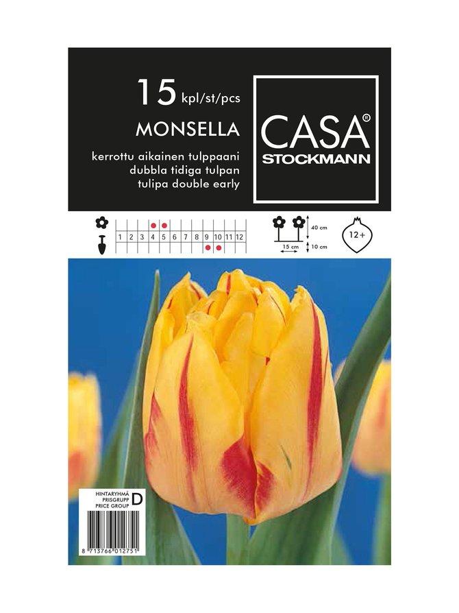Kerrottu aikainen tulppaani -kukkasipulit