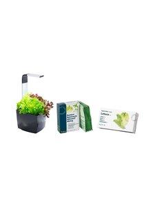 Tregren - T3-keittiöpuutarha ja salaatin kasvatussetti - BLACK | Stockmann