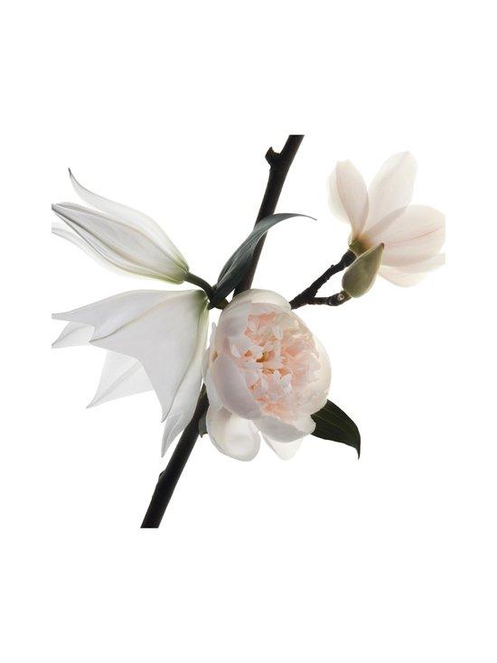 Yves Saint Laurent - Mon Paris Floral EdP -tuoksu 30 ml - NOCOL | Stockmann - photo 5
