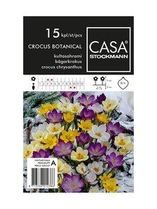 Casa Stockmann - Kultasahrami-kukkasipulit - MONIVÄRINEN | Stockmann