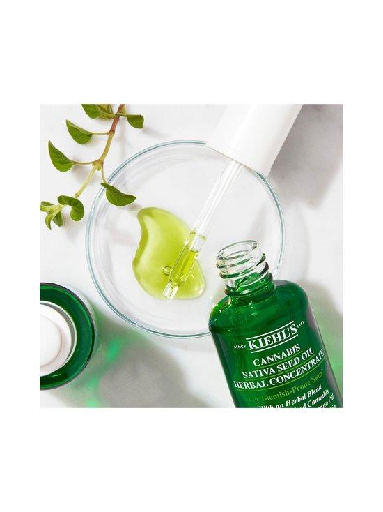 Kiehl's - Cannabis Sativa Seed Oil Herbal Concentrate -eliksiiri 30 ml - NOCOL | Stockmann - photo 7