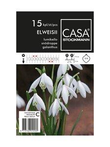 Casa Stockmann - Lumikello-kukkasipulit - VALKOINEN | Stockmann