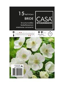 Casa Stockmann - Kruunuvuokko-kukkasipulit - VALKOINEN | Stockmann