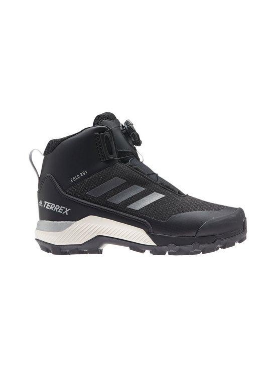 Terrex Winter Mid Boa Hiking Shoes -kengät
