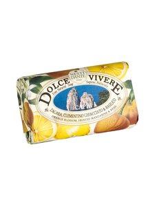 Nesti Dante - Capri-palasaippua 250 g - null | Stockmann
