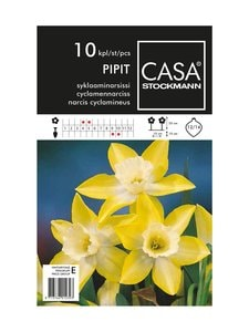 Casa Stockmann - Syklaaminarsissi-kukkasipulit - KELTAINEN/VALKOINEN | Stockmann