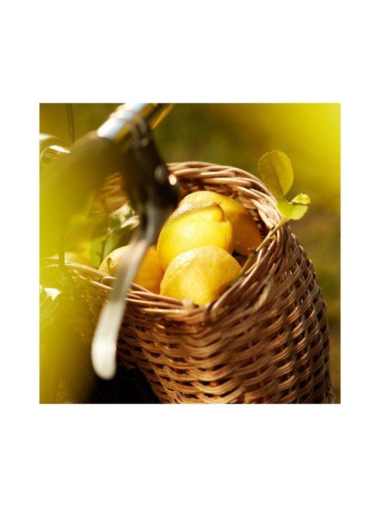 Maison Margiela - Replica Under the Lemon Tree EdT -tuoksu 30 ml - NOCOL | Stockmann - photo 6