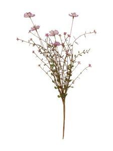 Pentik - Niittykukka-koristekukka 55 cm - VAALEANPUNAINEN | Stockmann