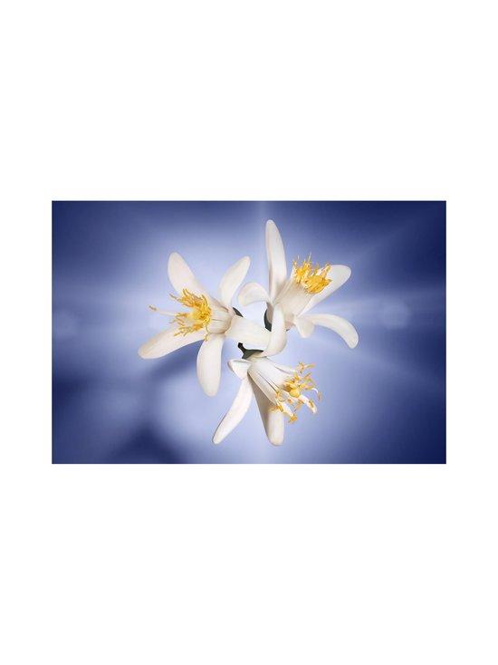 Lancôme - La vie est belle L'Eclat de Parfum -tuoksu - 19   Stockmann - photo 4