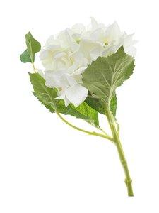 Pentik - Hortensia-koristekukka 43 cm - VALKOINEN | Stockmann
