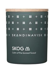 Skandinavisk - SKOG-tuoksukynttilä 65 g - FOREST GREEN | Stockmann