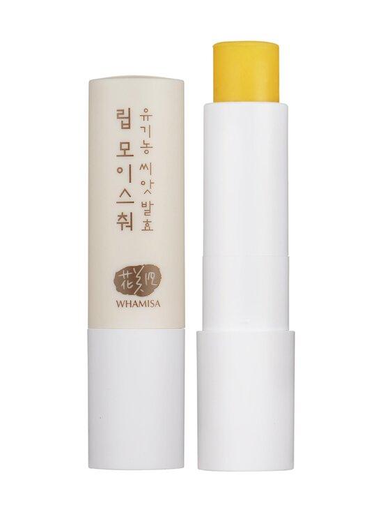 Whamisa - Seeds Lip Moisture -huulivoide 4 g - NOCOL | Stockmann - photo 2