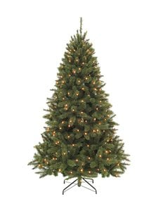Triumph Tree - Bristlecone-joulukuusi 155 x 99 cm - GREEN | Stockmann