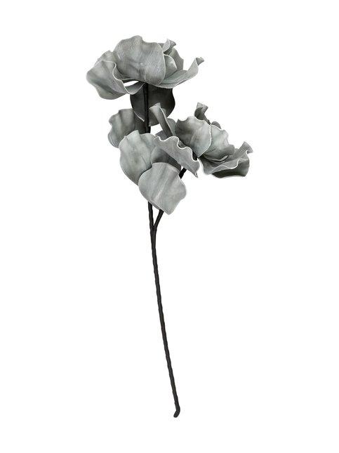 Cherish-koristekasvi 75 cm