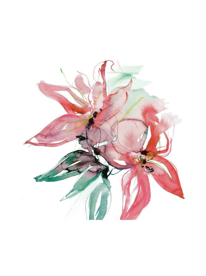 Amazon Lily -lautasliinat 24 cm, 20 kpl