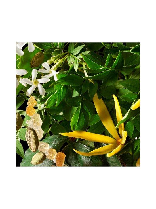 Molton Brown - Relaxing Ylang-Ylang Body Wash -suihkugeeli 300 ml - NOCOL | Stockmann - photo 4